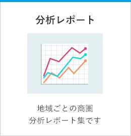 分析レポート